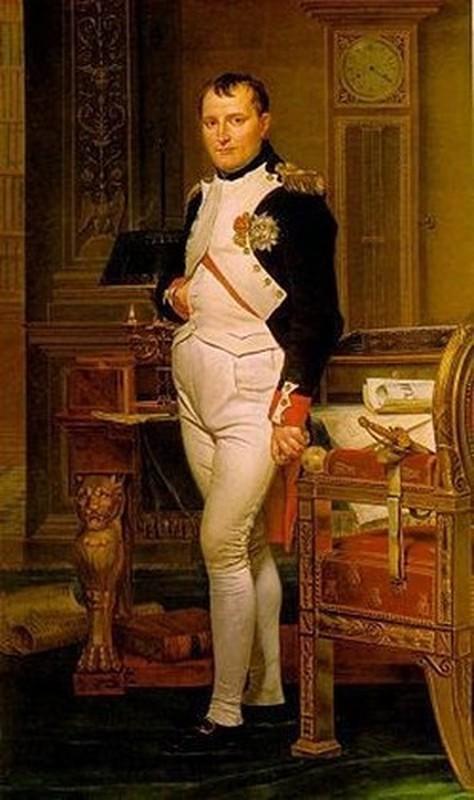 So phan hoang de Napoleon duoc nha tien tri doan tu som?-Hinh-3