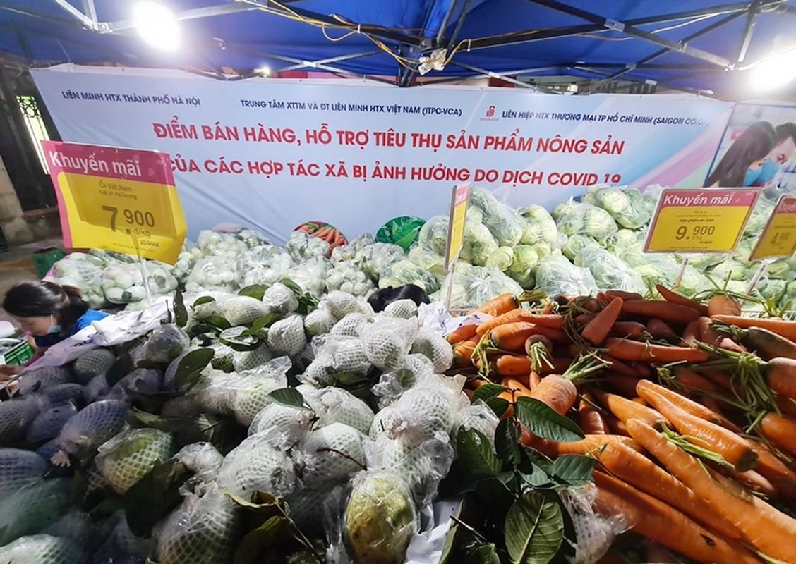 """Sieu thi BigC, Co.opmart, Vinmart vao cuoc """"giai cuu"""" nong san Hai Duong-Hinh-8"""