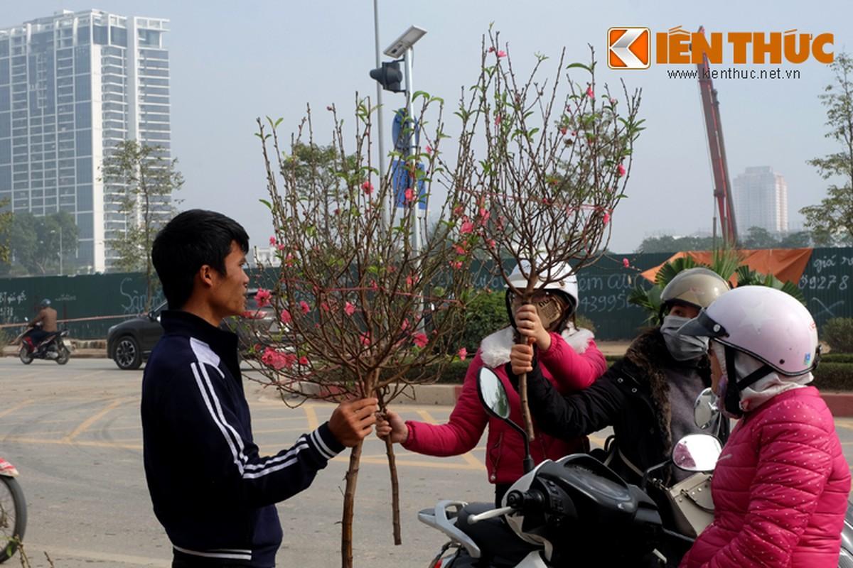 Anh: Tet ve tren nhung xe cho dao rong tren pho Ha Noi-Hinh-11