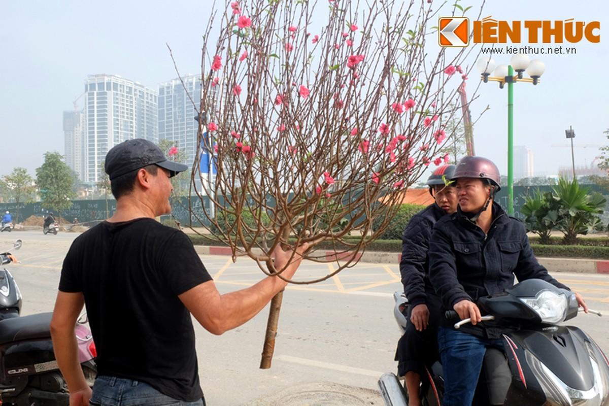 Anh: Tet ve tren nhung xe cho dao rong tren pho Ha Noi-Hinh-12