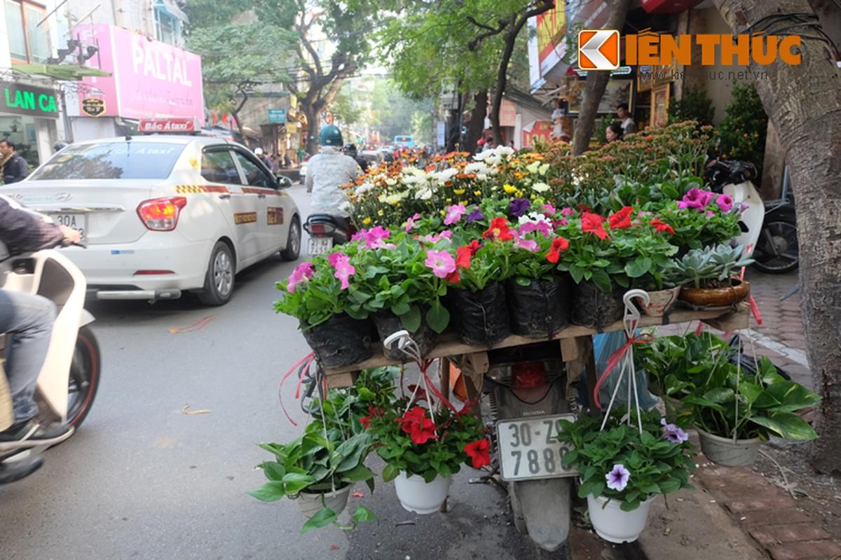 Anh: Tet ve tren nhung xe cho dao rong tren pho Ha Noi-Hinh-17
