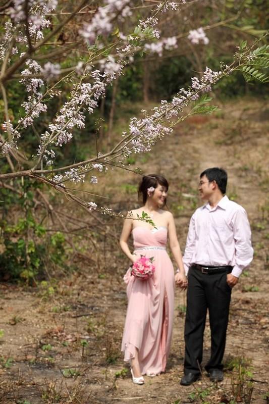 Ngam cung duong hoa anh dao tuyet dep tai Vung Tau-Hinh-5