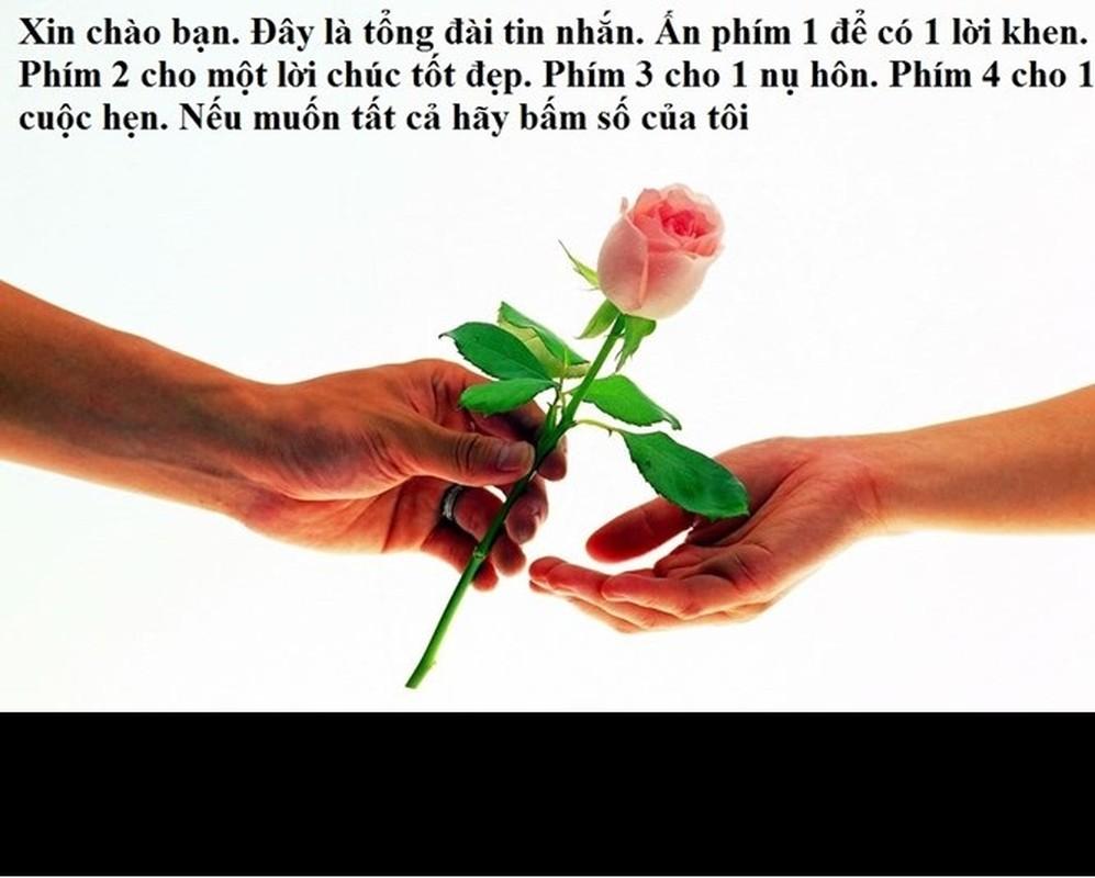 Loi chuc Valentine giup cac chang don tim ban gai-Hinh-5