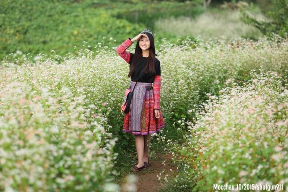 Mua hoa tam giac mach dep ngat ngay o Moc Chau-Hinh-9