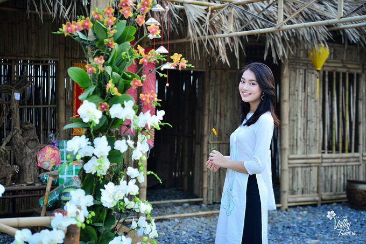 Du xuan dau nam: Vuon hoa 15 hecta khoe sac o Ninh Binh-Hinh-8