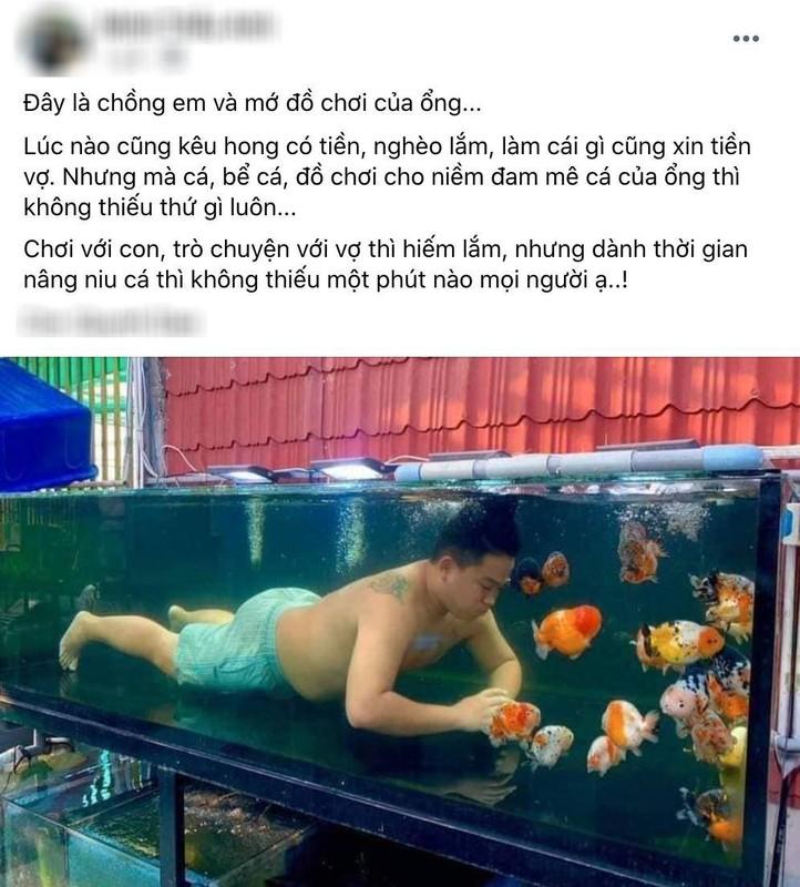 Chồng mê cá cảnh hóa Aqaman, vợ chán nản lên mạng bóc phốt