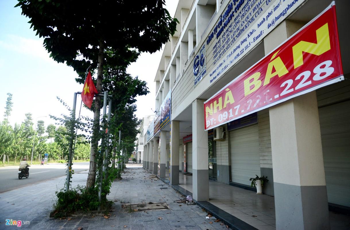 Anh: Thanh pho 1.000ha nhieu nam hoang vang o Binh Duong-Hinh-12