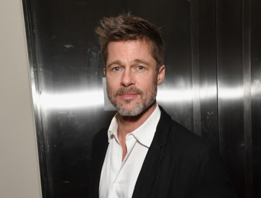 Brad Pitt  - Angelina Joilie giau co the nao truoc khi ly hon?-Hinh-11