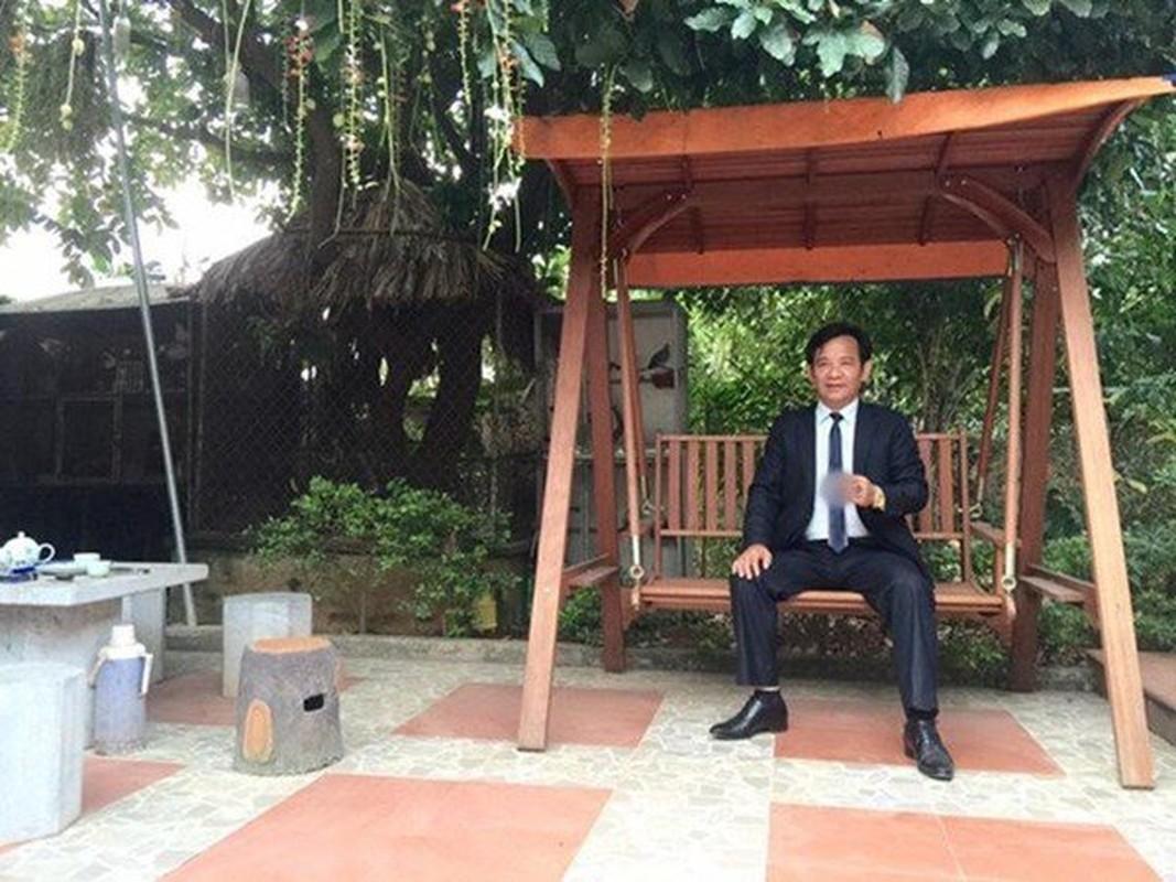 Nha vuon hon 1.000 m2 trong cay, nuoi ga cua nghe si Quang Teo-Hinh-8