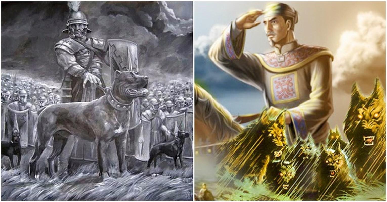 Thu linh cua doi quan cho san co mot khong hai trong su Viet-Hinh-8