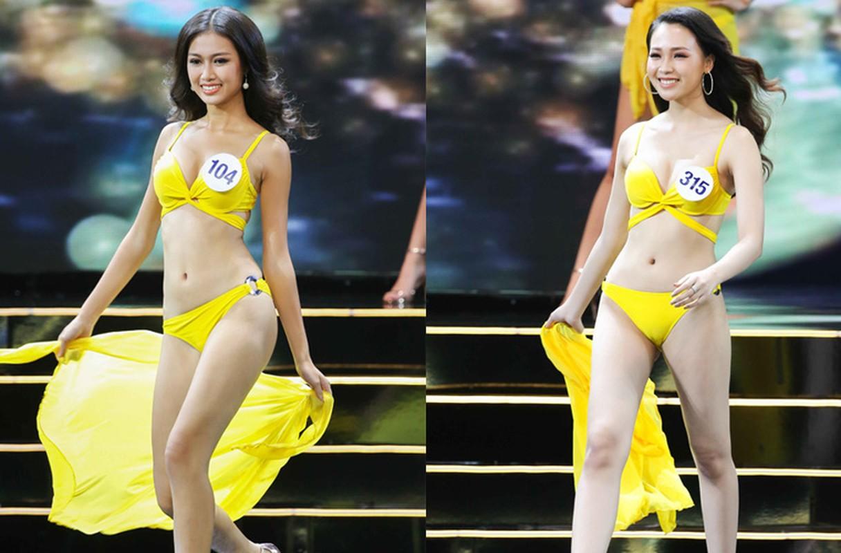 Thi sinh Hoa hau Hoan vu VN nuot na voi bikini trong ban ket-Hinh-4