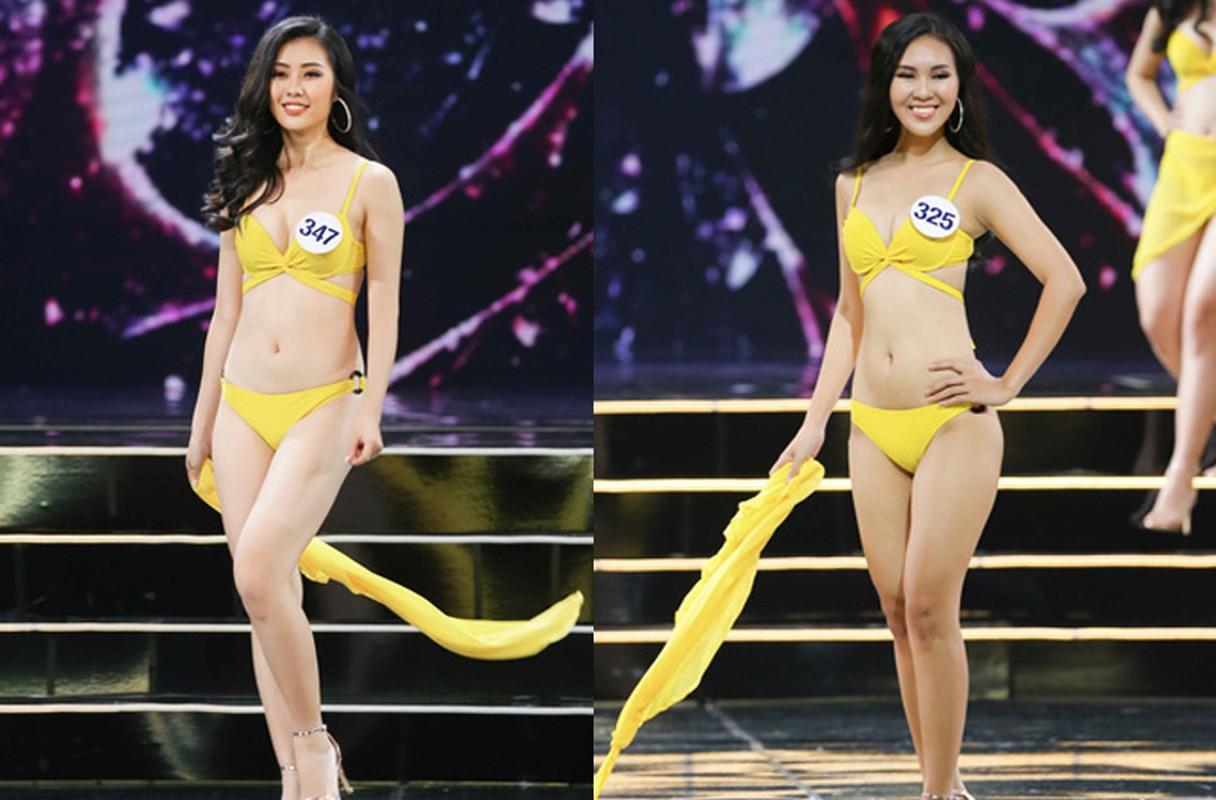 Thi sinh Hoa hau Hoan vu VN nuot na voi bikini trong ban ket-Hinh-9