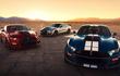 Ford Shelby GT500 2021 thêm gói sợi carbon hơn 230 triệu đồng