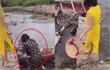 """Chụp ảnh """"sống ảo"""" nhận kết đắng, chị em làm trò cười cho netizen"""