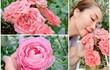 Bên trong biệt thự ngập hoa hồng của MC Ốc Thanh Vân