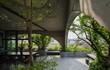 Báo Mỹ tấm tắc khen nhà Việt thô mộc, ngập cây xanh giữa phố