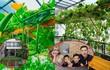 Mê mẩn vườn rau xanh mướt trong biệt thự 40 tỷ của Lê Hoàng (The Men)