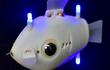 Cá robot thám hiểm đại dương thu thập những hình ảnh tuyệt đẹp