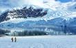 """Nhiều phát hiện chứng minh Nam Cực từng """"xanh mướt"""" như Amazon"""