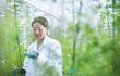 Nghiên cứu ra hoạt chất chống virus Corona cực mạnh trong ngải cứu