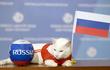 """Lý do mèo Achilles được lựa chọn làm """"nhà tiên tri"""" Euro 2021"""