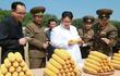 Hình ảnh hiếm hoi về cuộc sống lao động ở Triều Tiên