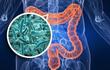 Kinh ngạc vi khuẩn thần thánh giúp con người sống thọ 100 tuổi