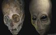 Phát hiện cực choáng hộp sọ người ngoài hành tinh có hốc mắt to đùng?