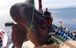 """Đi đánh cá, bất ngờ tóm được """"quái vật tiền sử"""" ở Địa Trung Hải"""