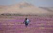 Cảnh tượng hiếm thấy trên sa mạc khô cằn nhất thế giới
