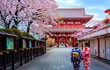 Những điều thú vị làm nên sức hút của đất nước Nhật Bản