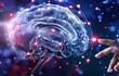 Não bò sát, não thú, não người VTV24: Giả thuyết 3 cấp độ não sai lầm?