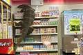 """Video: Khách hàng """"đứng tim"""" thấy kỳ đà khổng lồ quậy trong siêu thị"""