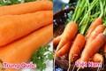 20 cách phân biệt rau củ Trung Quốc và Việt Nam, nắm chắc để tránh mua nhầm