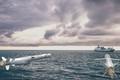 Khu trục hạm Anh có thể phải sử dụng tên lửa Israel?