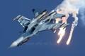 Lần đầu cận chiến máy bay Nga, F-35 tỏ ra thua kém Su-30