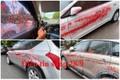 Điểm tin sáng 28/7: Hàng loạt ô tô bị tạt sơn ở Hà Nội