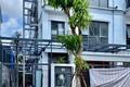 """Biệt thự """"mọc"""" thêm thang máy, chủ đầu tư KĐT Gamuda Gardens nhận """"trát"""" phạt"""