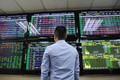 Cổ phiếu nhóm phân bón và thuỷ sản rực sáng giữa thị trường đỏ lửa