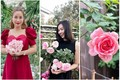 Mãn nhãn vườn hồng đắt giá trong nhà mỹ nhân Việt