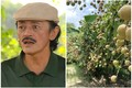 Nhà vườn rộng thênh thang ngập tràn hoa trái của nghệ sĩ Giang Còi