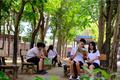 """MXH bỗng chốc """"xanh rì"""" với """"Triệu cây vươn cao cho Việt Nam xanh"""""""