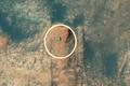 Hình ảnh tàu thăm dò NASA leo núi tìm sự sống trên sao Hỏa