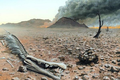 Trái đất đang bước vào cuộc đại tuyệt chủng thứ 6 trong lịch sử?