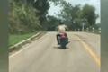 Video: Đang bò trên đường, rắn độc bay lên đớp người đi xe máy