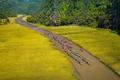 Tận mục 4 con sông đẹp tại các di sản thế giới ở Việt Nam