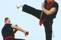 Vén màn môn võ Việt chuyên dùng để khắc chế võ công Trung Hoa