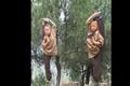Video : Quá trình khổ luyện thành cao thủ ở chùa Thiếu Lâm