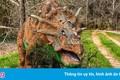 Có gì trong công viên khủng long lớn nhất thế giới bị bỏ hoang