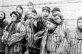 Nữ hộ sinh người Ba Lan cứu sống nhiều trẻ em ở trại Auschwitz